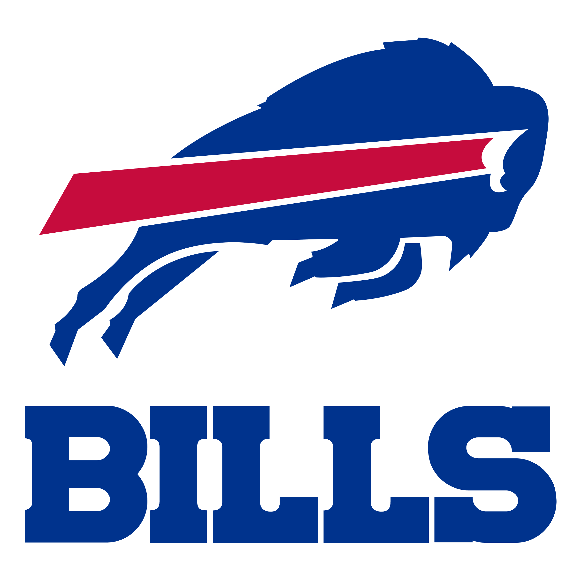 Image result for buffalo bills