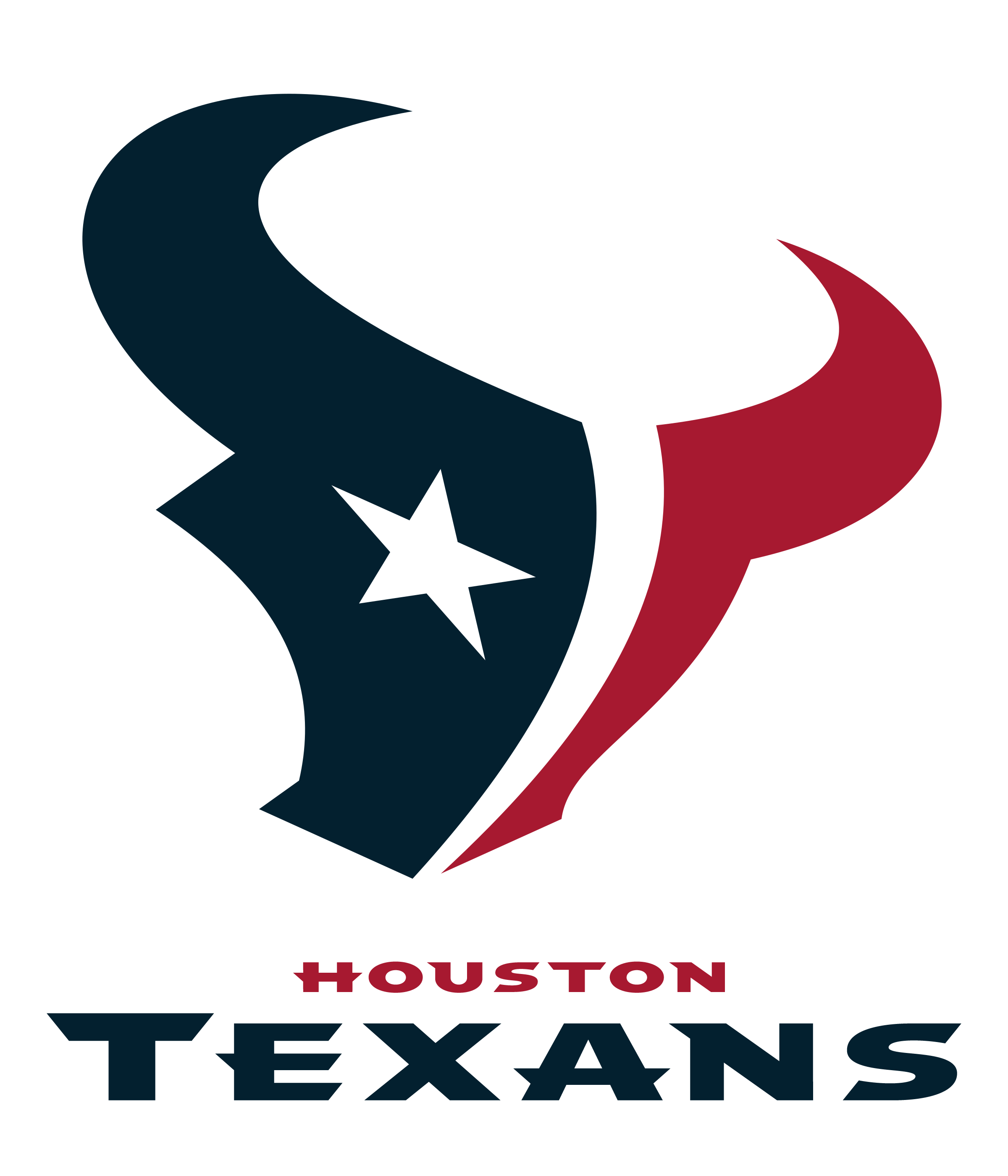 Image result for texans logo