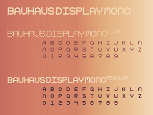 Bison Font Family - Freebie Supply