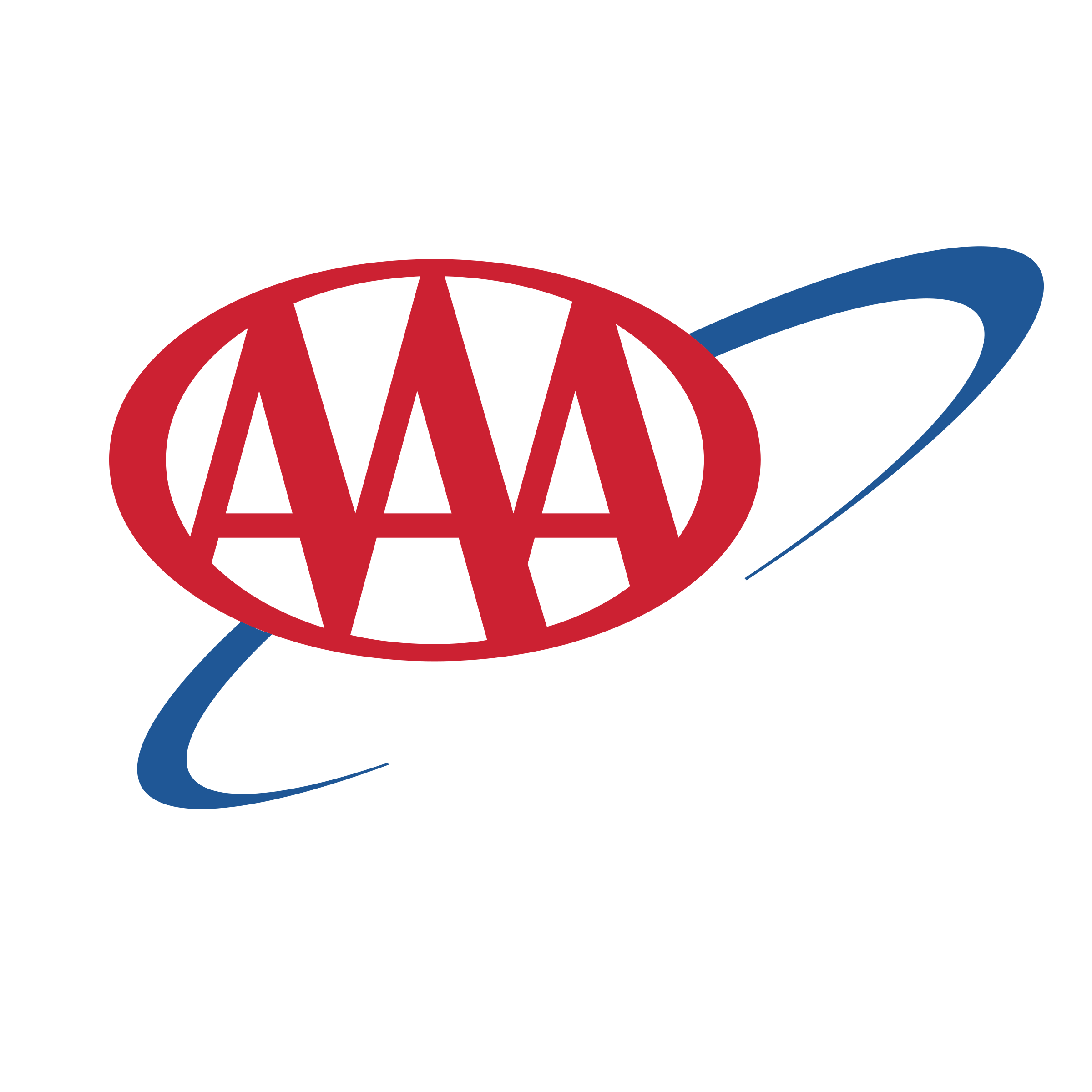 Image result for aaa logo