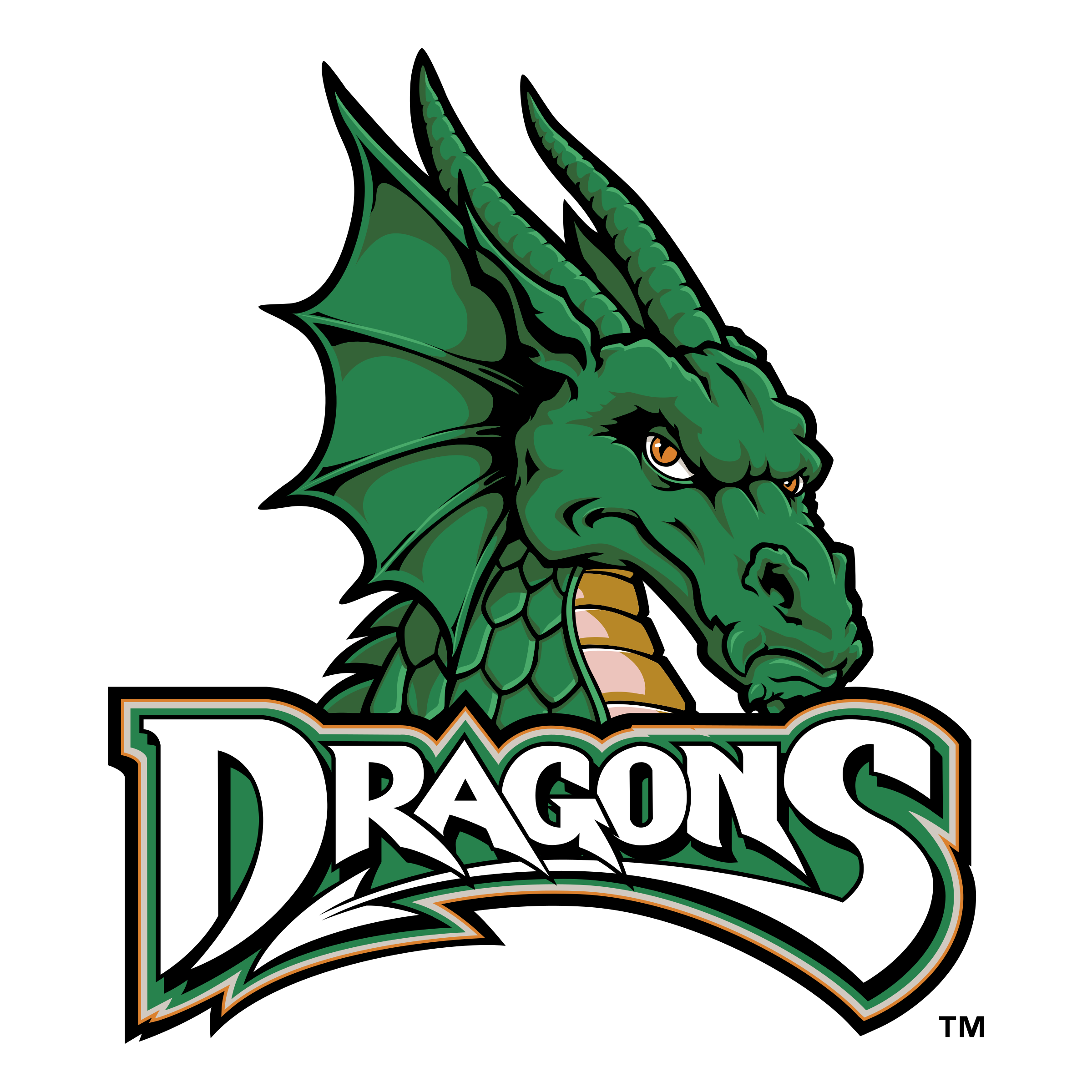 dayton dragons logo png transparent amp svg vector freebie