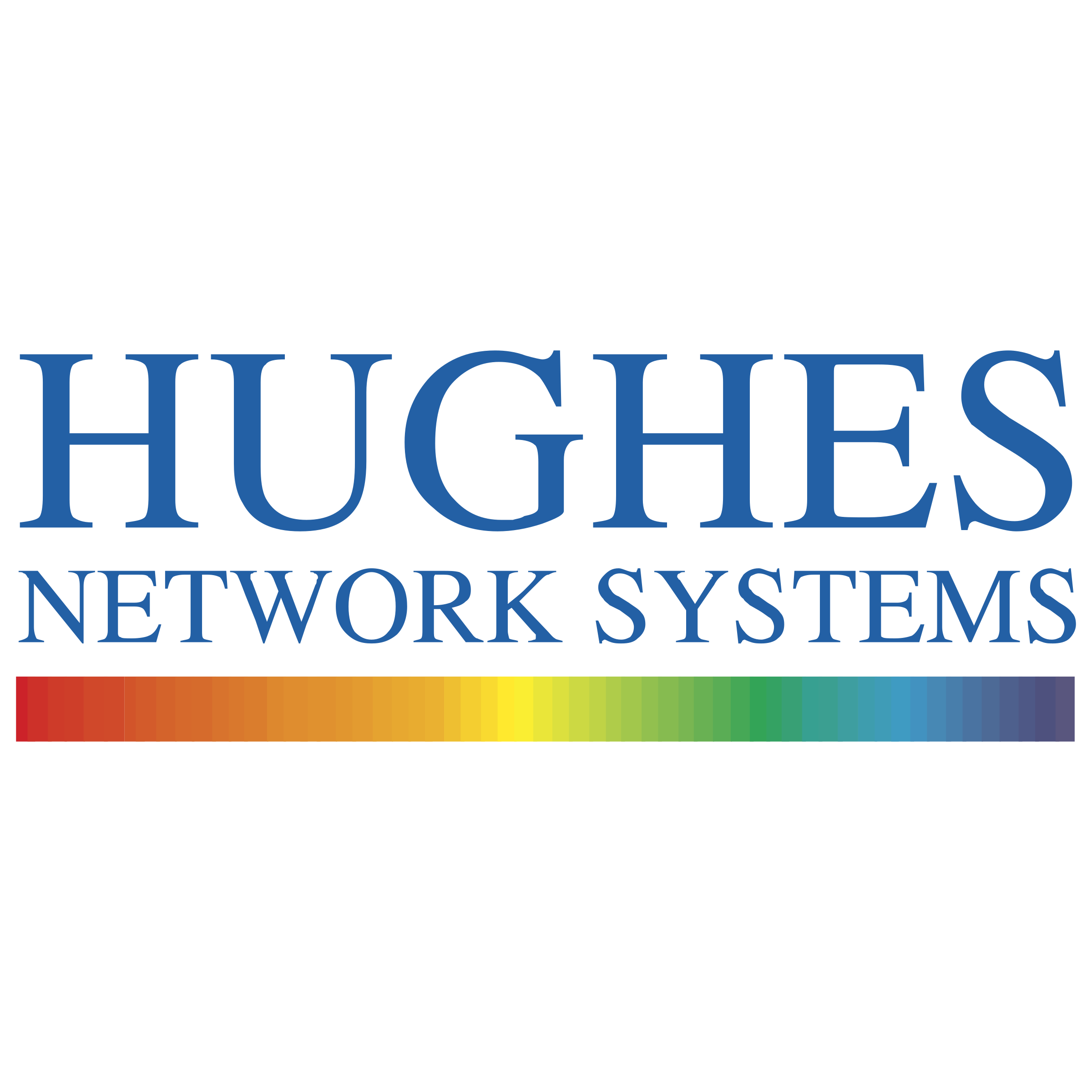 Network Systems logo