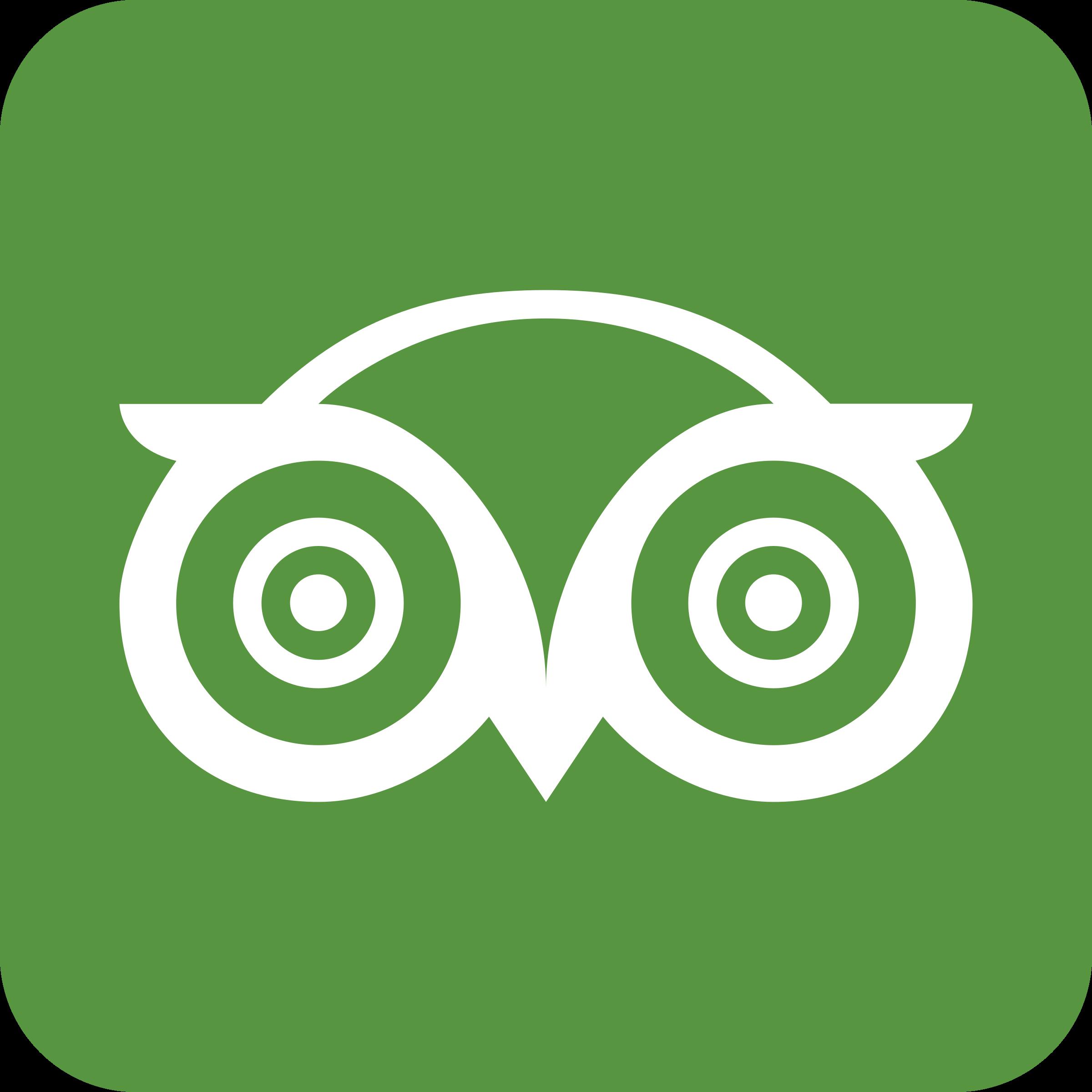 Tripadvisor Logo   Significado, História e PNG