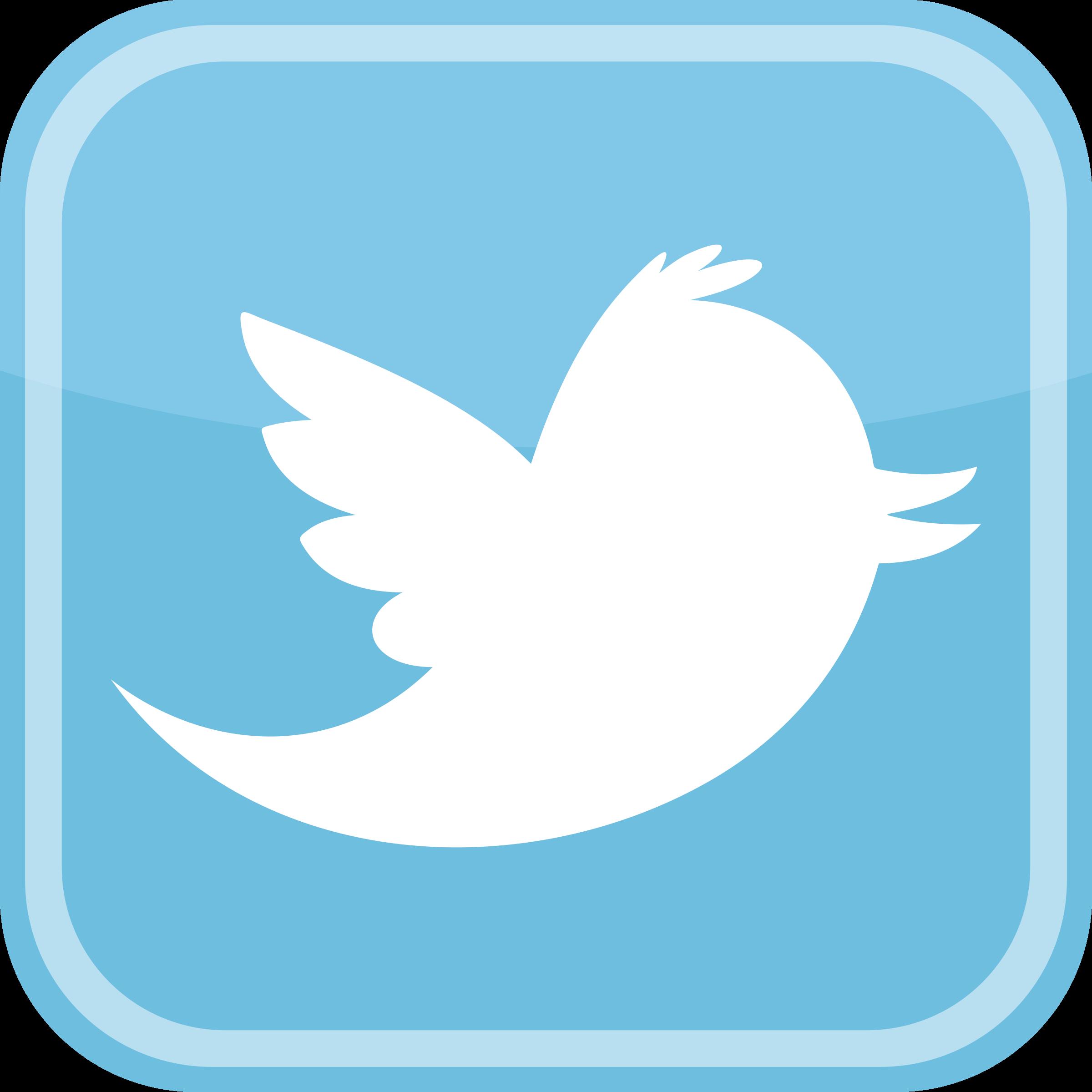 Twitter bird icon transparent