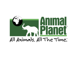 APC 01 Logo PNG Transparent & SVG Vector - Freebie Supply