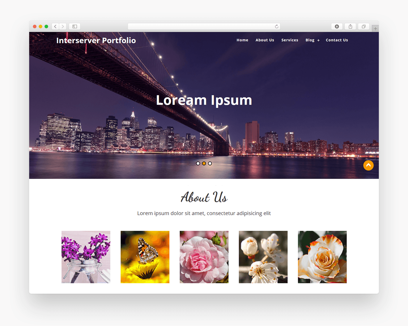 Interserver portfolio free business wordpress theme freebie supply the interserver portfolio theme for wordpress is a latest portfolio theme for various type of businesses it is easily customizable and have various options flashek Image collections